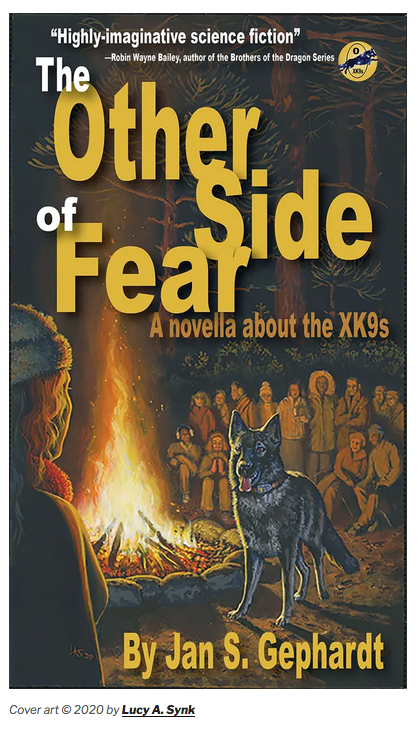 The Other Side of Fear Book cover